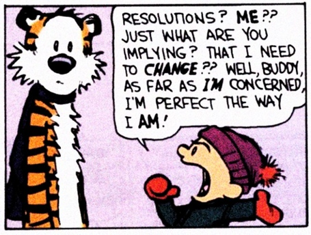 Calvin_and_Hobbes_Resolutions_Image