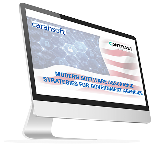 Modern Software Assurance Strategies for Government Agencies