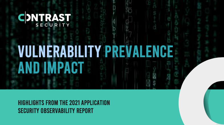 Vulnerabilities-Prevalence-and Impact_Infographic - window graphic