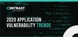 2020 Report Vulnerabilities_Infographic_06152020
