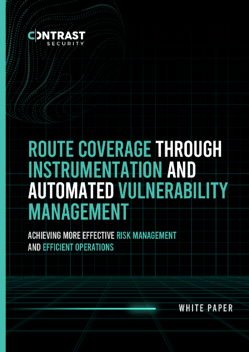 route-coverage-through-instrumentation-and-automated-vulnerability-management_whitepaper_07012020_Final